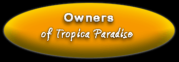 Own A little piece of Tropica Paradise